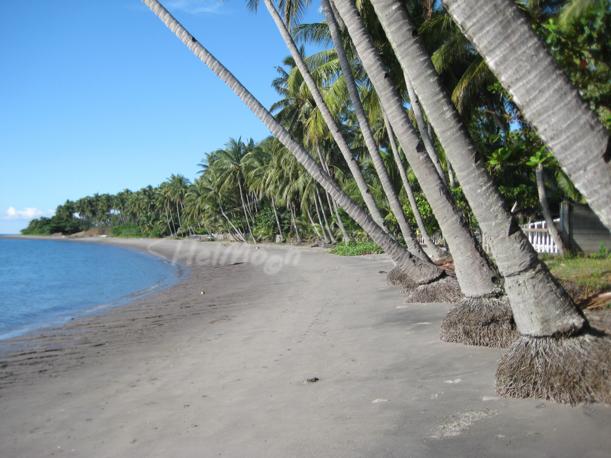 Negros Well Beach (18)